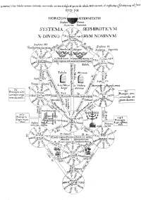 The Tree of Life from Athanasius Kircher's Oedipus Aegypiacus