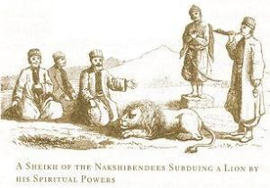 Naqshbandi Sheikh